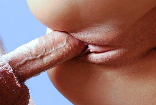 Разнообразный страстный секс с шикарными моделями - секс порно фото